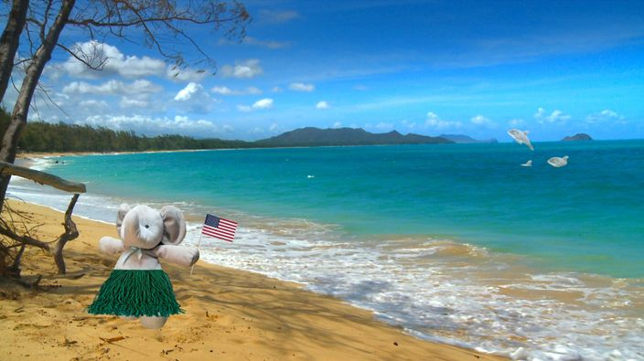 之後去了夏威夷,享受陽光海灘 (網上圖片)