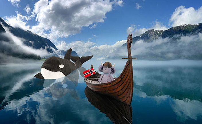 再北上挪威探殺人鯨 (網上圖片)
