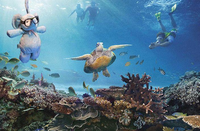又去大堡礁同海龜潛水 (網上圖片)