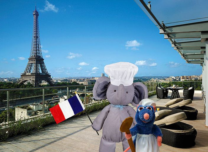 到了巴黎探五星級大鼠 (網上圖片)