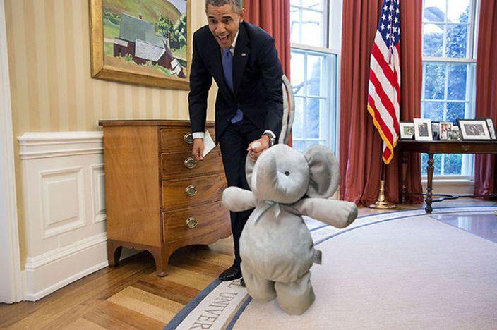 奧巴馬也搶著和小象合照 (網上圖片)