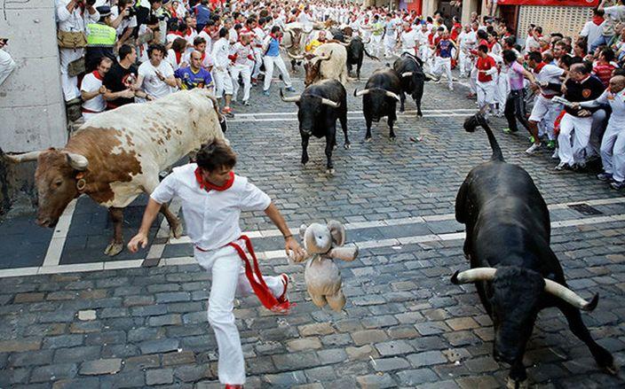 在西班牙俾狂牛追 (網上圖片)