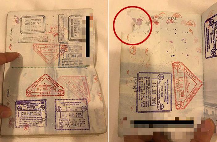護照一角收損(紅圈)(喬妹FB圖片)