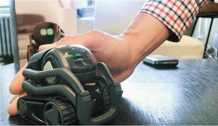 圖: AI機械人玩具趁勢成為新春熱門禮品,農村人也歡迎。