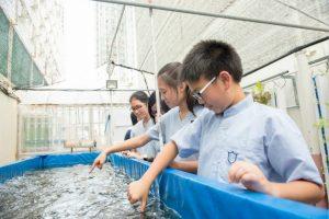 学生对活动教学最有兴趣。图片︰巴士的报