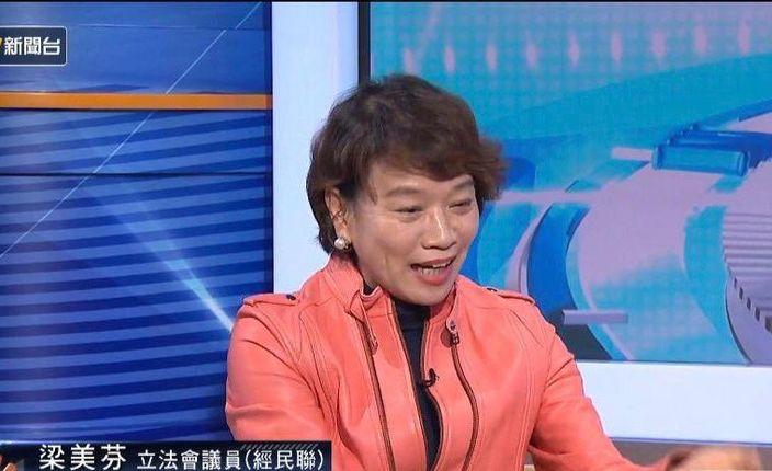 立法局議員梁美芬 。NowTV截圖