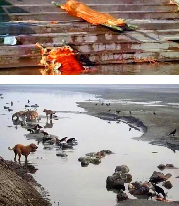 印度人葬在恒河。