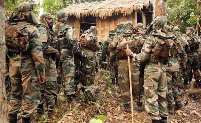 印度出動軍隊對抗蝗蟲。