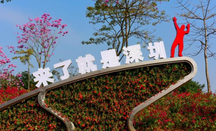 「來了就是深圳人」成為深圳街頭隨處可見的口號。