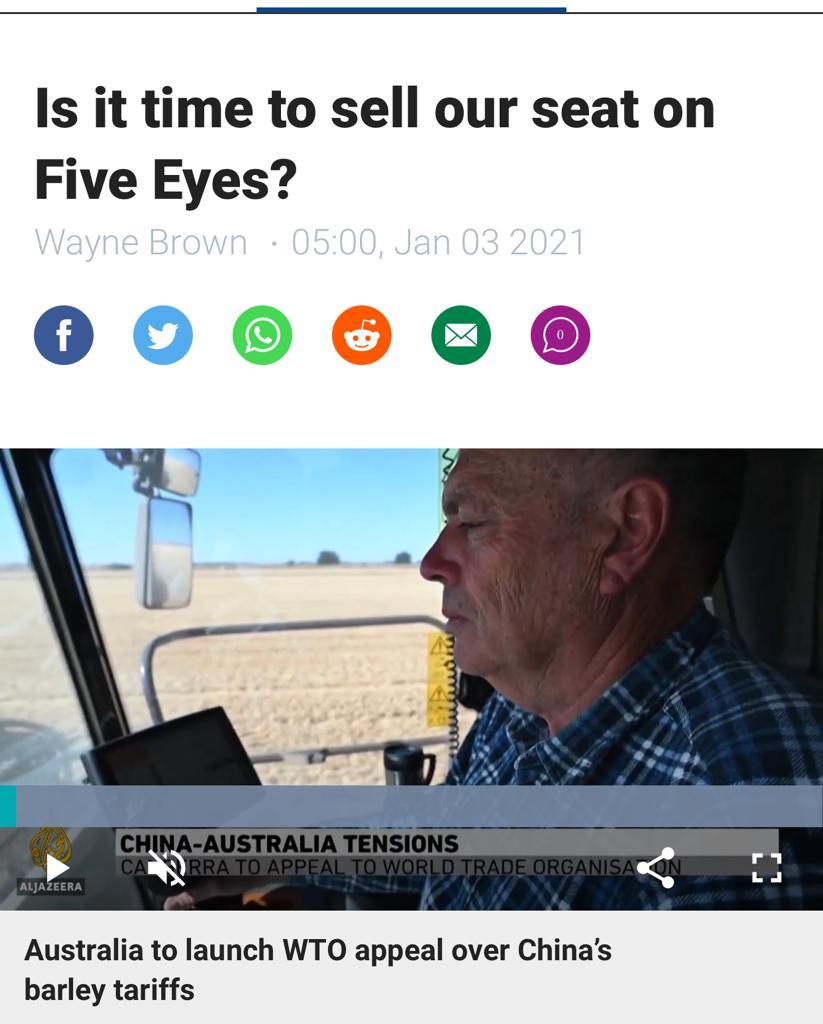 紐西蘭「Stuff新聞」的文章。