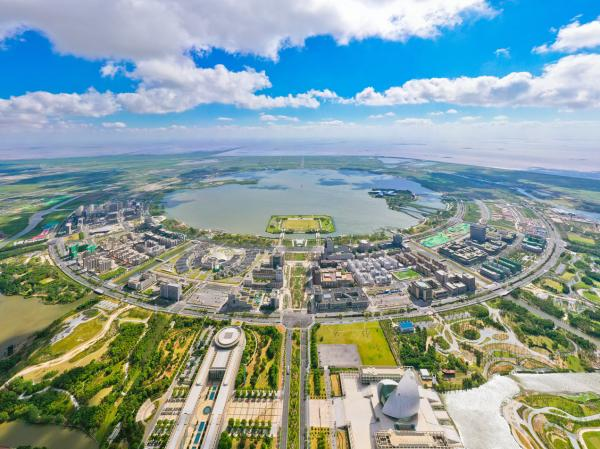 上海臨港。科技日報圖片