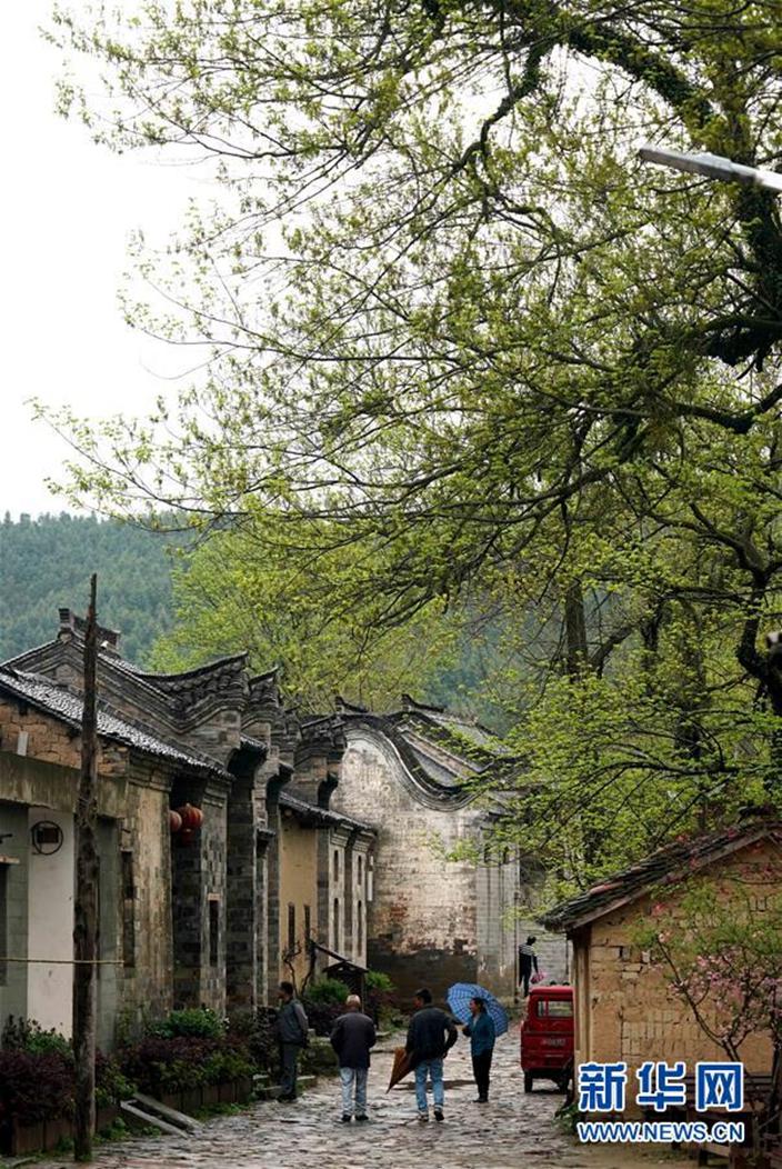 鄉村生態是經濟好資源。(新華社圖片)