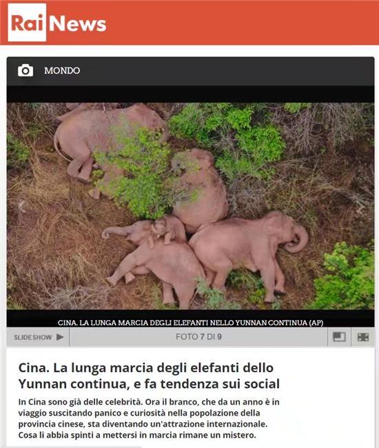 意大利网友在总台意大利文报道下方发表的评论。