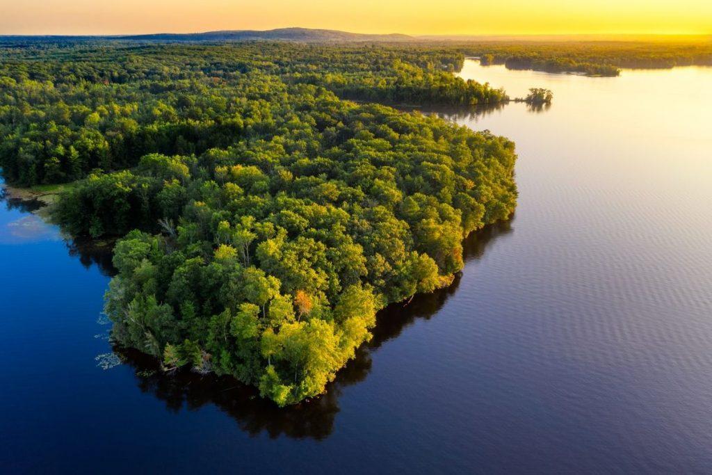 到访巴西要去亚马逊雨林。