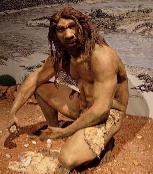 智人祖先:海德堡人。