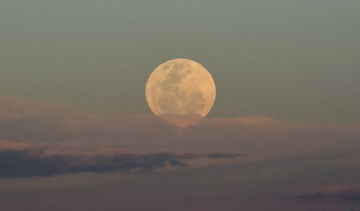 澳洲墨爾本上空的月亮(網上圖片)
