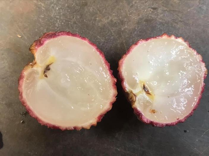 2020最猛品種...澳洲老伯研發20年「無核荔枝」再也不用吐籽!網:吃起來一定很爽!