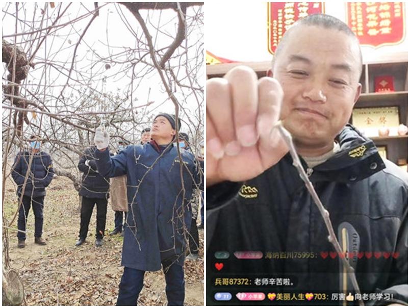 江苏43岁果农直播分享种植经验 开7门网课赚143万港元