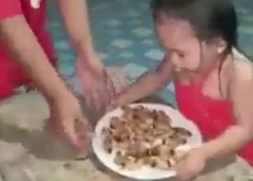 菲女童吞活虫母挨轰 喊冤称为越南美食