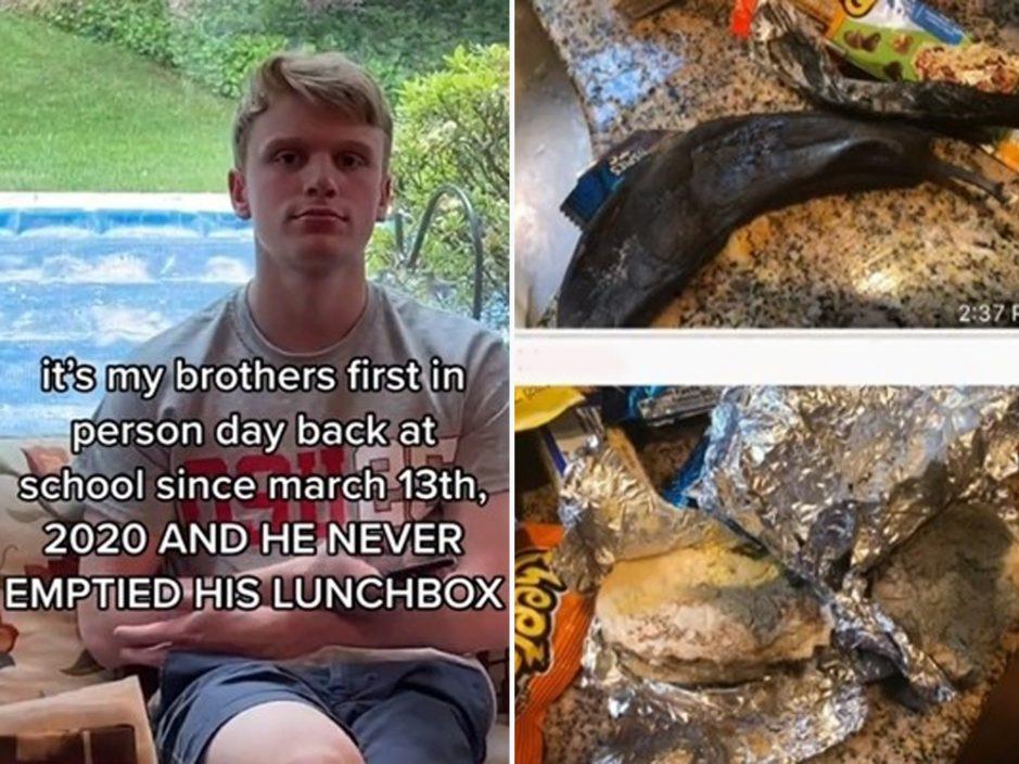 复课执书包开封14个月前午餐盒 百万网民吓到呕