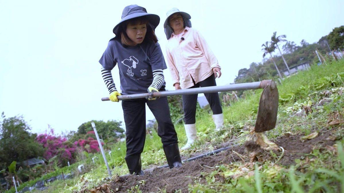 《中女唔易做》之齐转工      小仪做农夫赵学而人生首次见工做Sales