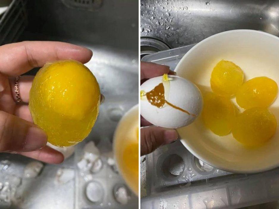 台网民防疫囤鸡蛋冰箱内冻结 达人指点:更浓更好吃