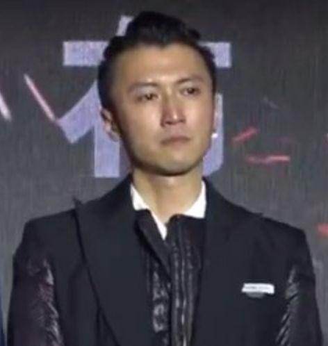 甄子丹忆陈木胜最后时光 谢霆锋见导演櫈即感触落泪