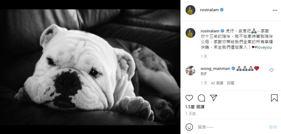 陈展鹏获小猪比按摩庆父亲节 林夏薇因10岁爱犬患癌爆喊