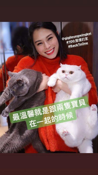 冒炎热天气郊外拍广告 Gin Lee为同猫猫培养感情喂蚊都制