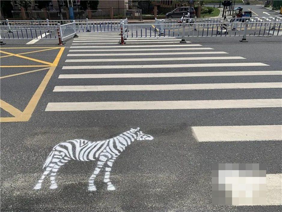 """杭州斑马线真有""""斑马"""" 交警:加强学童注意安全"""