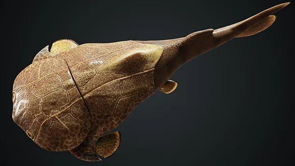 全球第二处!重庆发现4.23亿年前袖珍边城鱼