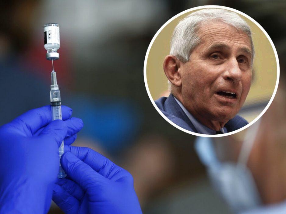 福奇:美国近期新冠死亡个案 逾9成无打疫苗