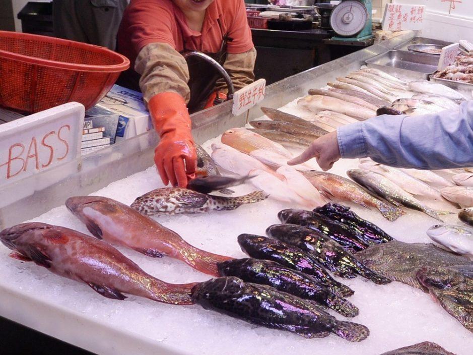西区副食品批发市场一档户 验出鲗鱼含有孔雀石绿