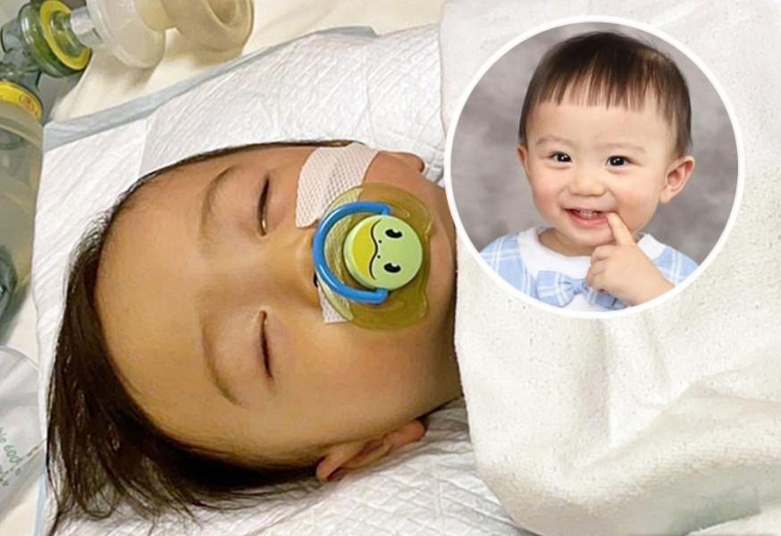 1岁柏熙获3捐赠者同时配对 柏熙妈妈:希望今午有结果能顺利完成手术