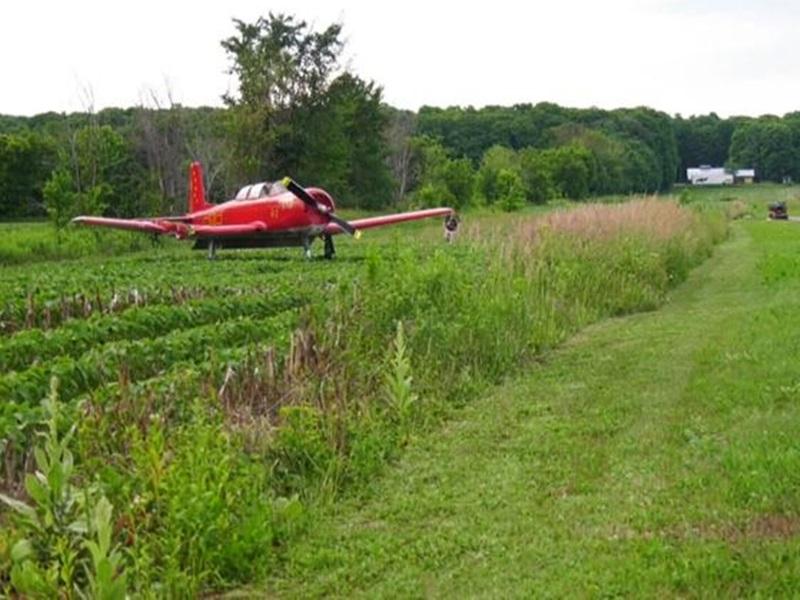 魁北克机场女子驾割草机除草 遭天降小型飞机击中身亡